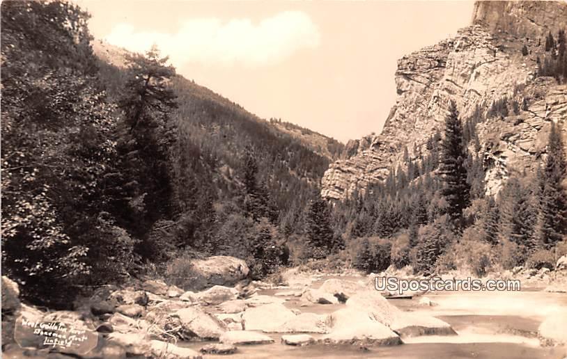 West Goolletin River - Bozeman, Montana MT Postcard
