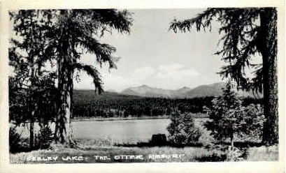 The Otter Resort - Seeley Lake, Montana MT Postcard