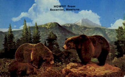 Howdy - Bozeman, Montana MT Postcard