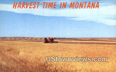 Harvest Time - Misc, Montana MT Postcard