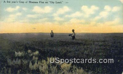 Crop - Misc, Montana MT Postcard