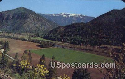 Green Carpet - Alberton, Montana MT Postcard