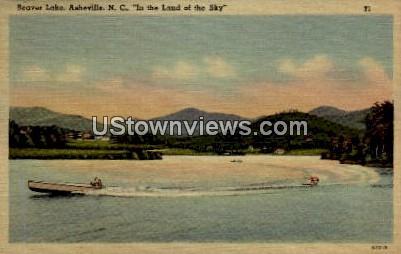 Beaver Lake - Asheville, North Carolina NC Postcard