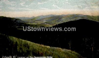 Looking Up the Swannanoa Valley - Asheville, North Carolina NC Postcard