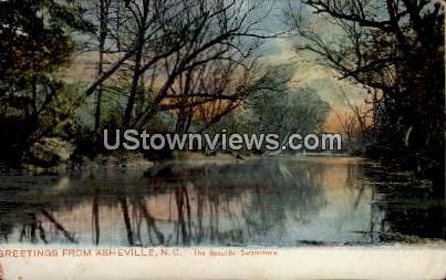 The Beautiful Swannanoa - Asheville, North Carolina NC Postcard