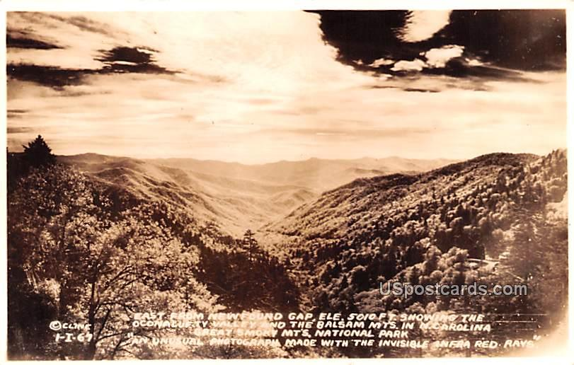 East from newfound Gap - Great Smoky Mountains National Park, North Carolina NC Postcard