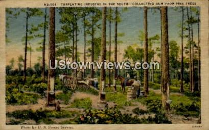 Turpentine Industry in the South - Misc, North Carolina NC Postcard