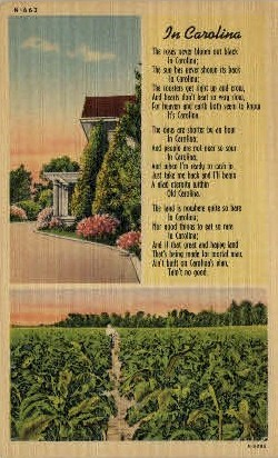 Poem: In Carolina - Misc, North Carolina NC Postcard