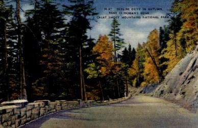Great Smokey Mountains National Park - Misc, North Carolina NC Postcard