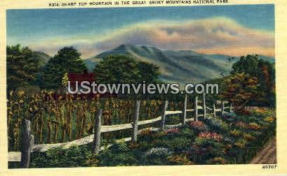 Sharp Top Mt. - Great Smoky Mountains National Park, North Carolina NC Postcard