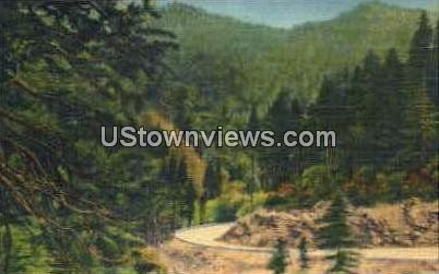 Curve of the Many Curves on Highway - Great Smoky Mountains National Park, North Carolina NC Postcard