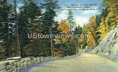 Skyline Drive in Autumn - Great Smoky Mountains National Park, North Carolina NC Postcard