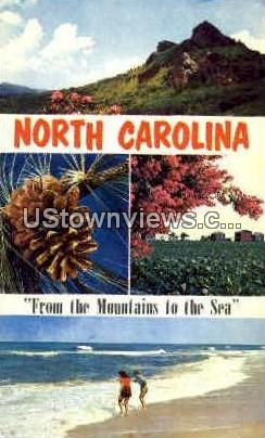 From the Mountains to the Sea - Misc, North Carolina NC Postcard