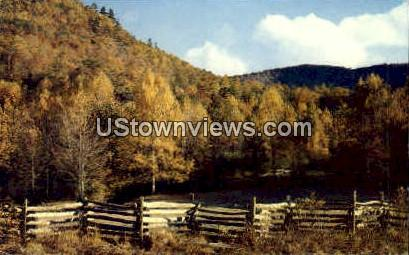 Early Fall - Asheville, North Carolina NC Postcard