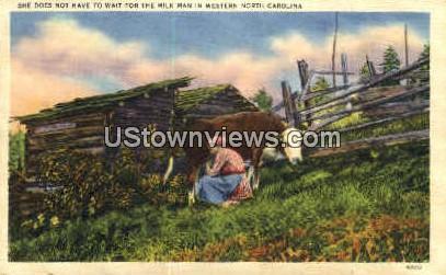 Milk Man in Western North Carolina - Misc Postcard