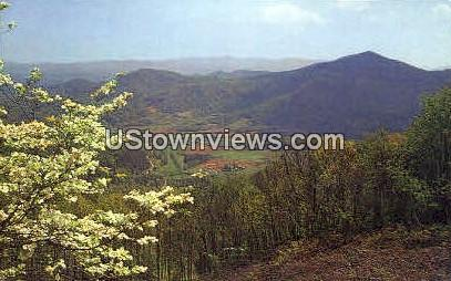 Springtime in the Mountains - Misc, North Carolina NC Postcard