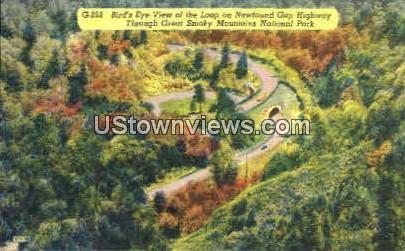 Newfound Gap Highway - Great Smoky Mountains National Park, North Carolina NC Postcard
