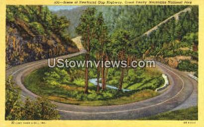 Scene of Newfound Gap Highway - Great Smoky Mountains National Park, North Carolina NC Postcard