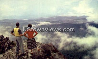 Above the Clouds - Great Smoky Mountains National Park, North Carolina NC Postcard