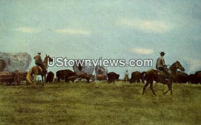 Buffalo Ranch - Concord, North Carolina NC Postcard