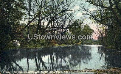 Swannanoa River - Asheville, North Carolina NC Postcard