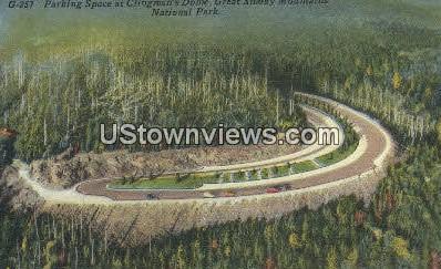 Clingman's Dome - Great Smoky Mountains National Park, North Carolina NC Postcard
