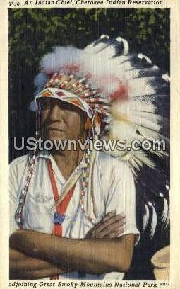 Indian Chief - Great Smoky Mountains National Park, North Carolina NC Postcard