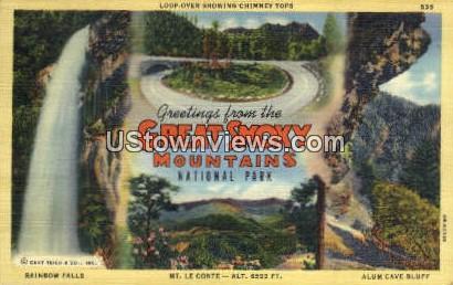 Mt. Le Conte - Great Smoky Mountains National Park, North Carolina NC Postcard