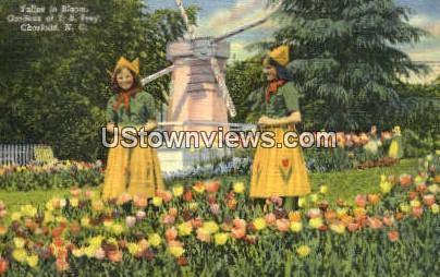 Gardens of J. B. Ivey - Charlotte, North Carolina NC Postcard