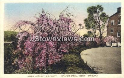 Salem Academy Driveway - Winston-Salem, North Carolina NC Postcard