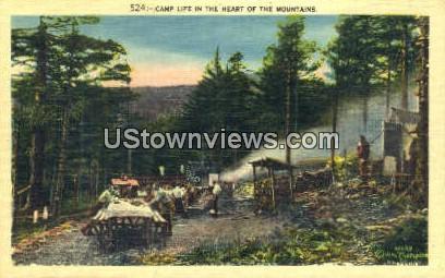 Camp Life - Misc, North Carolina NC Postcard