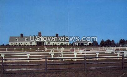 Mile-Away Farms - Misc, North Carolina NC Postcard