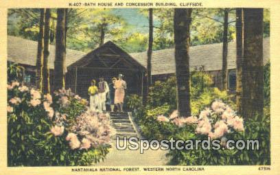 Mantahala National Forest - Western North Carolina Postcards, North Carolina NC Postcard
