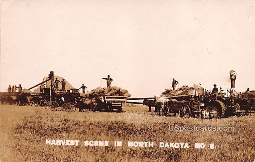Harvest Scene, Near Verona - North Dakota ND Postcard