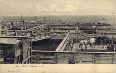 Stock Yards - Alliance, Nebraska NE Postcard