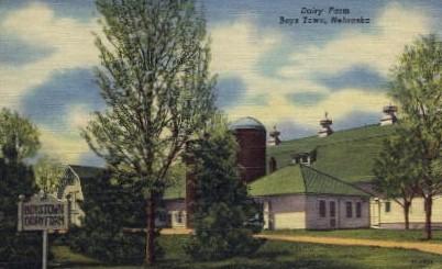 Dairy Farm - Boys Town, Nebraska NE Postcard