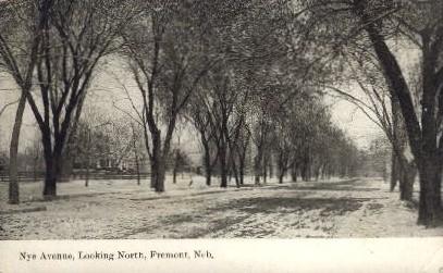 Nye Avenue, Looking North - Fremont, Nebraska NE Postcard