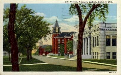Elm Avenue, Hastings College - Nebraska NE Postcard