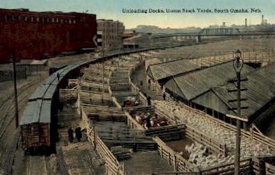 Unloading Docks, Union Stock Yards - Omaha, Nebraska NE Postcard