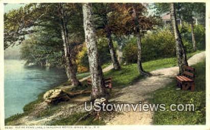 Along Echo Lake - Franconia Notch, New Hampshire NH Postcard