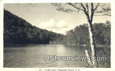 Real Photo Profile Lake - Franconia Notch, New Hampshire NH Postcard