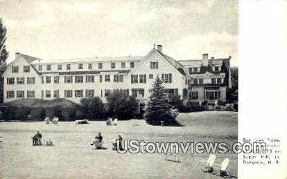 East Lawn, Peckett's - Franconia Notch, New Hampshire NH Postcard