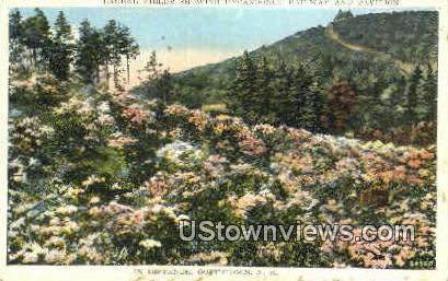 Laurel Fields - Goffstown, New Hampshire NH Postcard