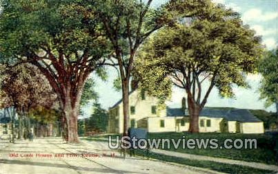 Old Cook House & Elm - Keene, New Hampshire NH Postcard