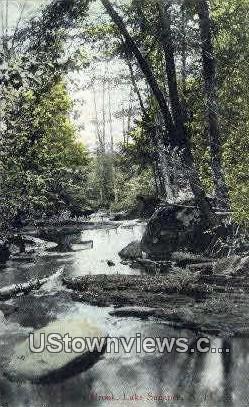 A Mountain Brook - Lake Sunapee, New Hampshire NH Postcard