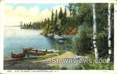 Shore - Lake Winnipesaukee, New Hampshire NH Postcard