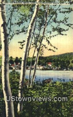 Birches, Weirs - Lake Winnipesaukee, New Hampshire NH Postcard