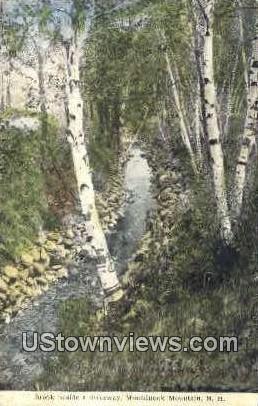Brook - Monadnock Mountain, New Hampshire NH Postcard