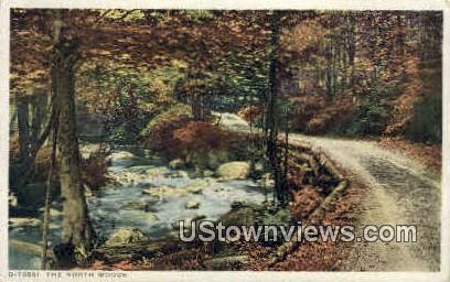 The North Woods - Misc, New Hampshire NH Postcard