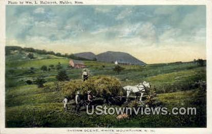 Haying - White Mountains, New Hampshire NH Postcard